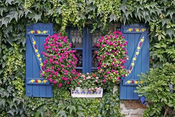 Concarneau, blaues Fenster, Bretagne