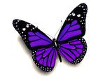 Fototapety 3D purple butterfly