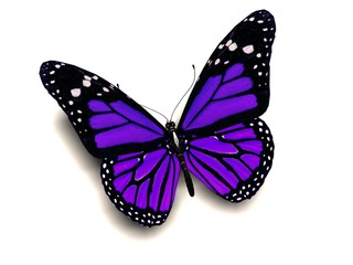 3D purple butterfly
