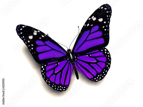 3D purple butterfly - 6301413