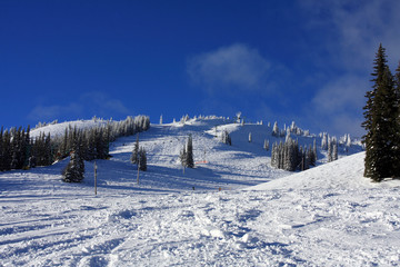 Ski slopes of Silver Star with the snow ghosts visible