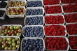 Assortment of Fruit Berries