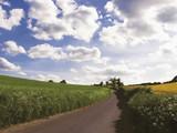 Country lane, Winkwell near Luton, Hertfordshire, poster