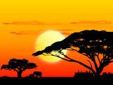 Africa sundown poster
