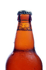 close up view of  beer bottle