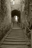 Stoneway steps Bridgnorth Shropshire