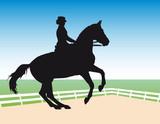Vector silhouette - equestrian sport: dressage poster