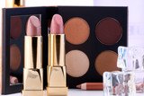 Makeup set of two lipsticks, eyeshadow, lotion and icecubes. poster