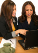 Women Business Team Discussing With Laptop
