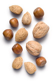 Almonds hazelnuts and walnuts isolated on white poster