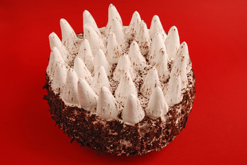 Delicious tiramisu cake with special decoration
