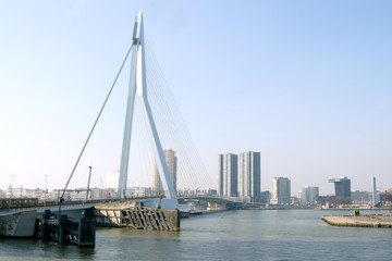 the sky-line of Rotterdam