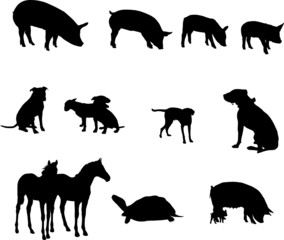 Collection of diverse animal vector silhouettes - vector