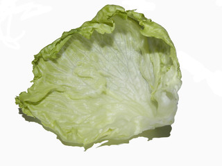 diet vegetable green iceberg isolated