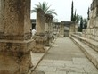 columns in the great synagogue of Capernaum in israel