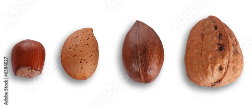Different nuts isolated on white backgrounbd