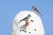 Birds On A Snowman