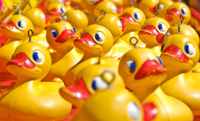 rubber ducky you are the one or two or few hundred