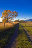 A rural road  outside of Boulder Colorado in Autumn poster