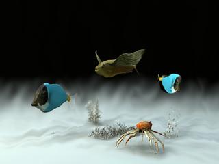 peces y cangrejo