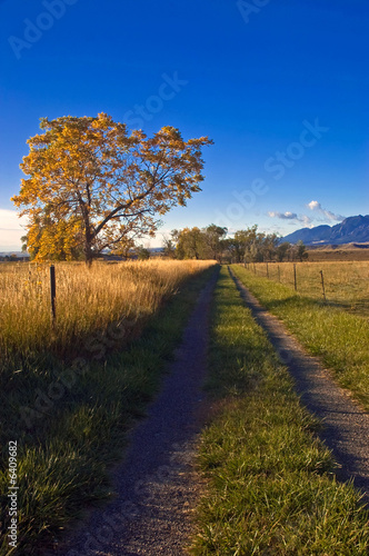 A rural road  outside of Boulder Colorado in Autumn
