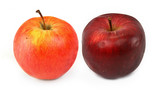 two various red apples on white, gentle shadow in front poster
