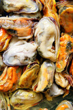 Mussels in oil close-up, may be used as background poster