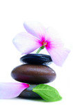 Smooth stones and pink flower poster