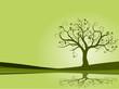 Detaily fotografie vektoru série - zelený strom kvetoucí na jaře vektoru