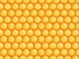honey bee comb background poster