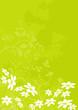 vecteur série - fleur marguerite - paysage de printemps et été
