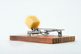 Alert mousetrap on a white background poster
