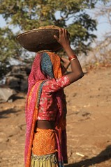 Colourful Indian Woman Labourer
