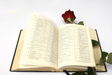 On a photo a rose and Holy Bible