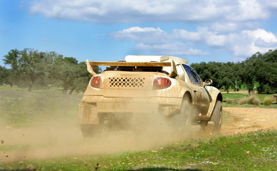 Car in competition in rally  off-road.