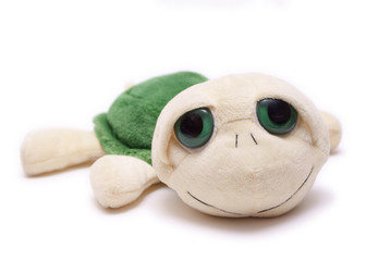 Plush turtle toy isolated on white background