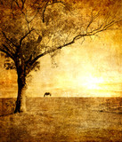 horse on sunset - toned picture in retro style - 6486497