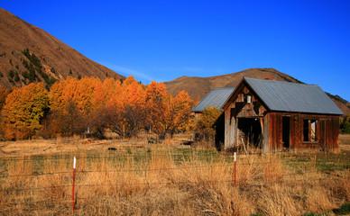 Rustic Autumn