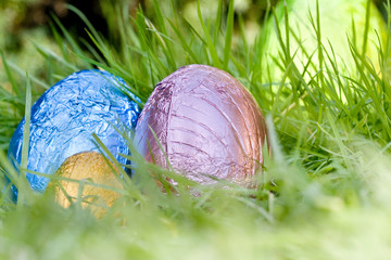 Easter eggs hiding in long grass