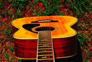 12 String Acoustic Guitar Top View
