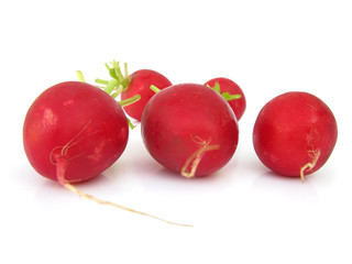 Radishes isolated on white