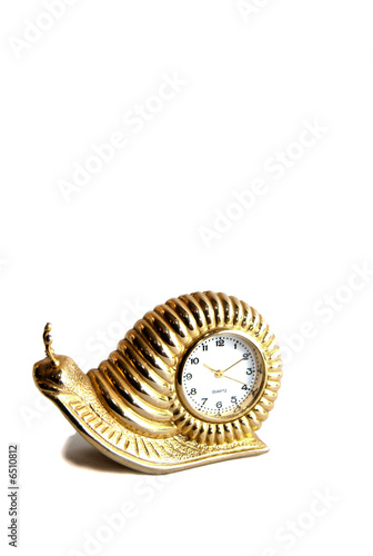 Leinwandbild Motiv A golden snail clock time piece on a white isolated background.