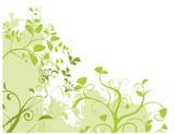 Fototapety vecteur série - paysage vert d'été ou de printemps