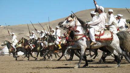 Horse Fantasia Calvary Charge