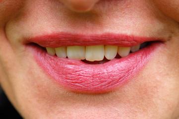Mund, Lippen