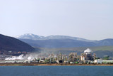 Chemical plant in nature poster
