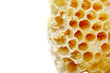 Close view of honeycomb