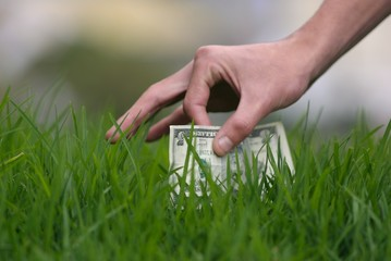 ticket in the grass