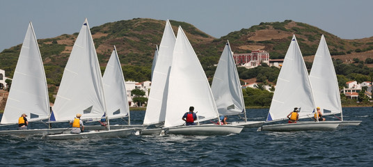 Regatta of small singlehanded sailing boats