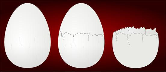 ovos partidos